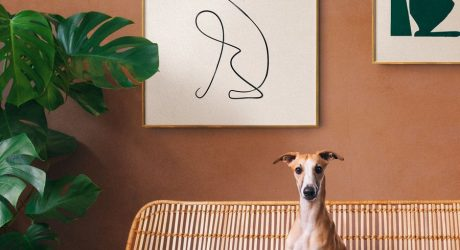 Personalized Modern Art for Dog Lovers from Dogmade