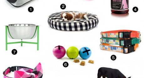 Modern Dog Accessories from PetFancy