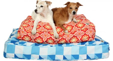 New Beds from Molly Mutt