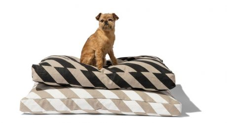 Mr. Dog Stripe Mattress Bed