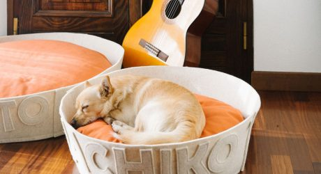 Handmade, Personalized Modern Dog Beds by Naps Design