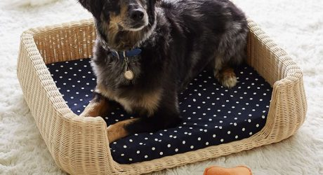 Northfield Canvas Wicker Pet Beds