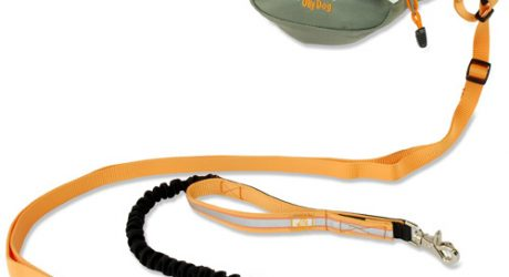 Ollydog Mt. Tam Running Belt and Leash