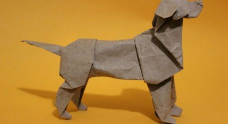 Origami Dogs by Steven Casey