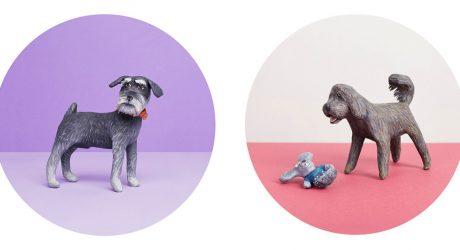 Mâché Me a Pet: Portraits by Alma Haser