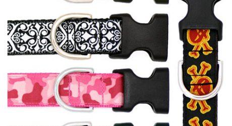 Pattern & Paw Collars