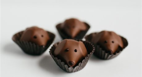 Peanut Butter Pups: Dog-Shaped Chocolates from Gearharts