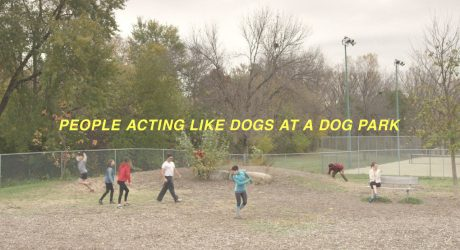 People Acting Like Dogs at a Dog Park