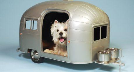 Modern Pet Camper