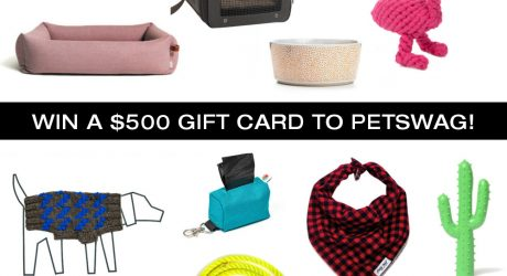 Giveaway: Win a $500 Gift Card to Petswag