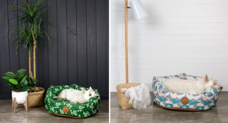 Modern Dog Beds from Pooky & Boo