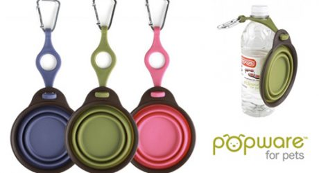 Popware for Pets Collapsible Travel Cup and Bottle Holder