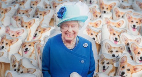 90 Corgi Pillows for the Queen