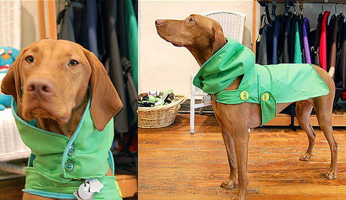 Upcycled Umbrella Dog Rain Coats