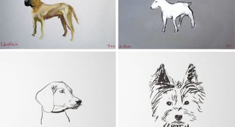 The A-Z of Dogs