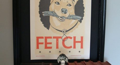 Fetch Poster from Roll & Tumble Press
