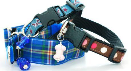 Roverdog8 Collars