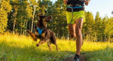 Trail Runner Collection from Ruffwear