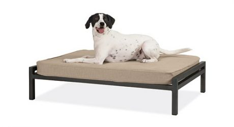 Schubert Pet Bed