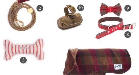 11 Dapper Gifts for Dogs from Scotch & Hound