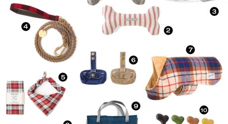 10 Fashionable Gifts for Modern Dogs from Scotch & Hound