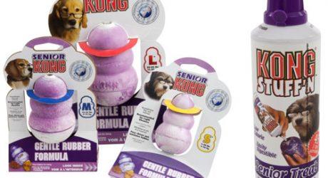 Kong for Senior Dogs