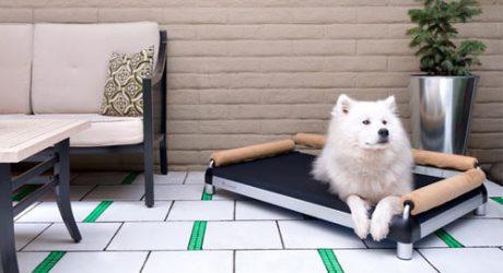 DoggySnooze Elevated Dog Beds