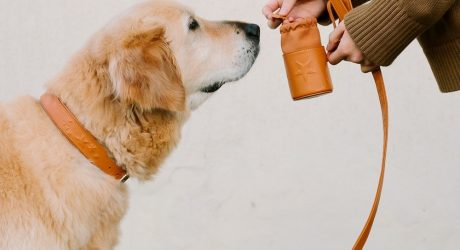 Leather Treat and Waste Bag Holders from Tommy & Bella