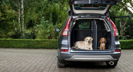 Vehicle-Specific Pet Barriers from Travall