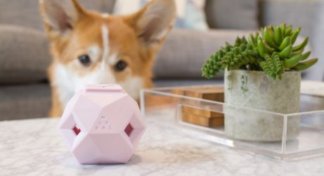 Limited-Edition Rose Quartz Odin Toy from Up Dog Toys