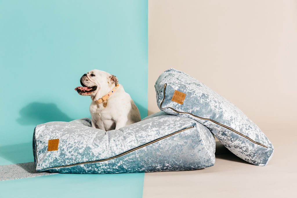 Crushed Velvet Dog Beds from Nice Digs