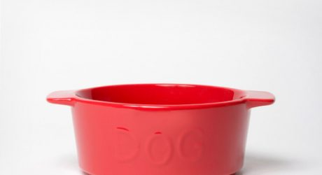 New Ceramic Dog Bowls from Waggo