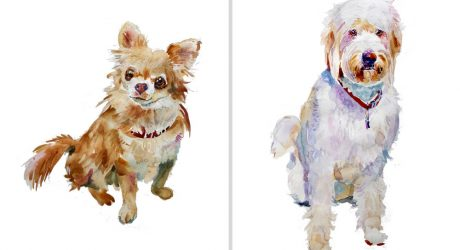 Custom Watercolor Pet Portraits and Dog Illustrations