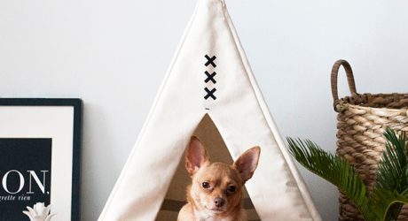 Pet Teepees by Wild & Loyal