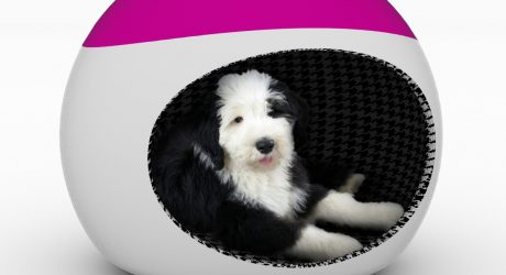 WOOFICE: An Office Chair and Dog Den in One