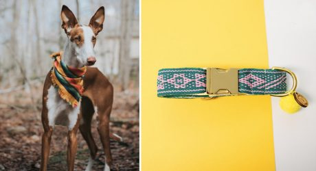 Stylish Fair-Trade Pet Gear from Xolotl