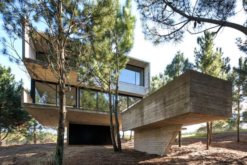 A Contemporary House in the Trees in Buenos Aires