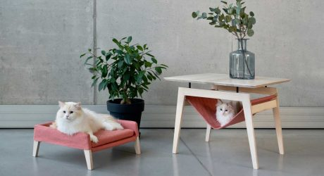 Kikko + Lulu: Comfy Cat Furniture From Labbvenn