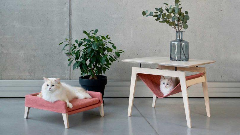 Kikko + Lulu: Comfy Cat furniture From Labbvenn