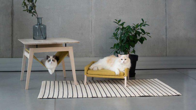 Excellent Kikko Lulu Comfy Cat Furniture From Labbvenn Design Milk Andrewgaddart Wooden Chair Designs For Living Room Andrewgaddartcom