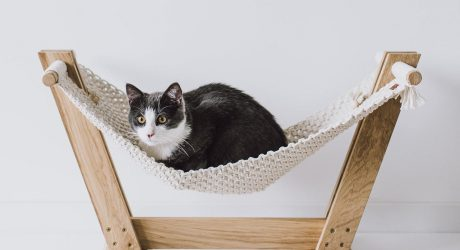 Handmade Macrame Cat Hammock From MakaArt Crafts