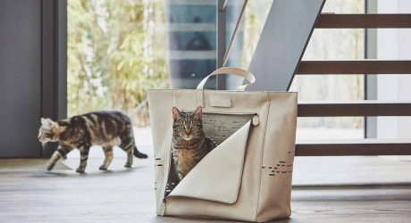 Tote Your Tabby Around in the Tosca Cat Travel Carrier