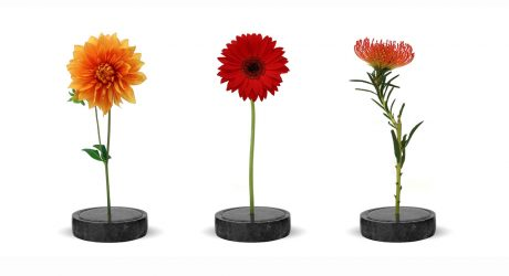 The Minimalist Solo Vase for Single Stems