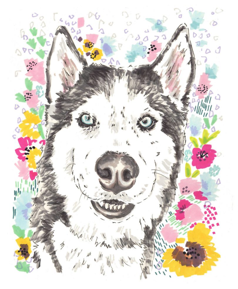 Custom Pet Portraits From Jo Chambers
