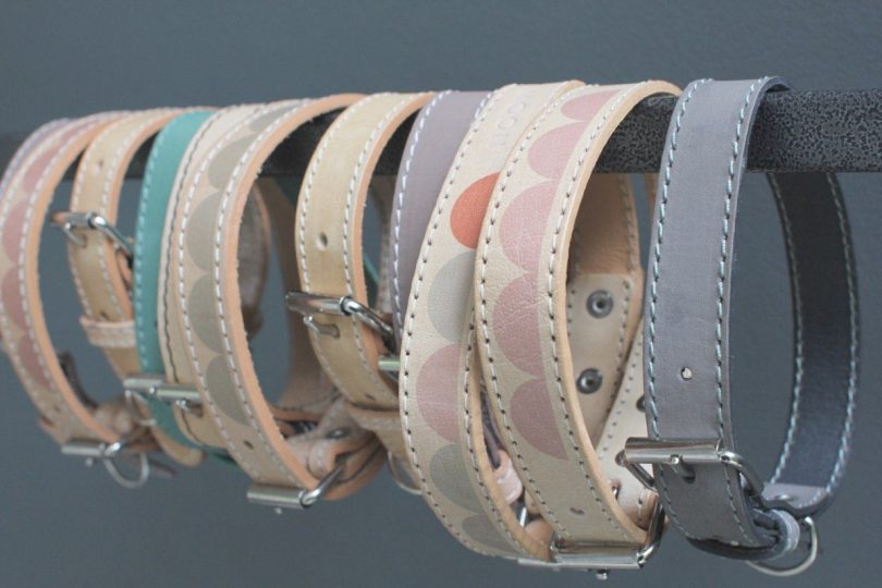 Modern Dog Collars and Leads From Benji + Moon