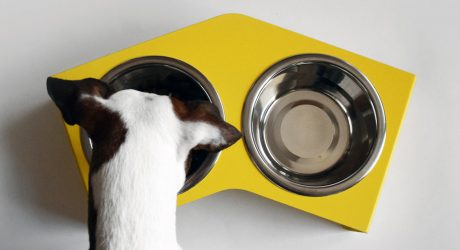 Miski V Feeder From HELLO PETS