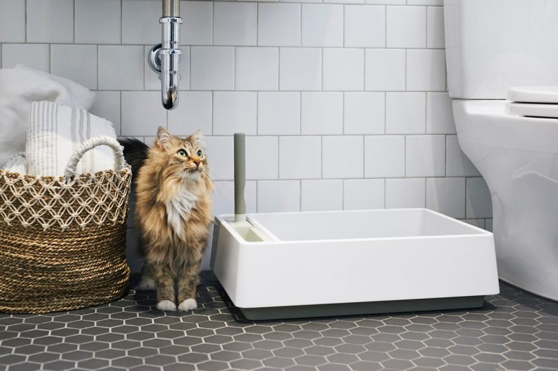 Tuft + Paw Designs a Modern Litter Box You Won?t Have to Hide