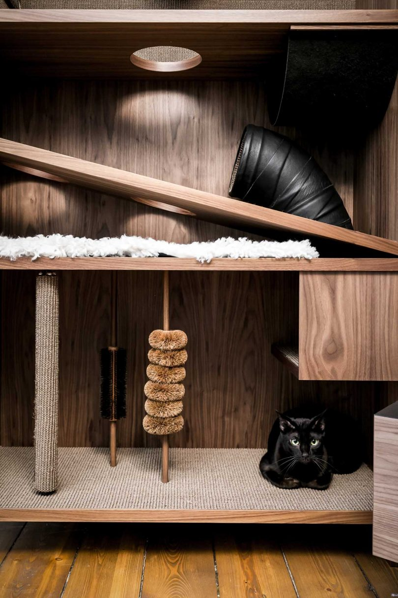 interior view of The Cat Flat modern cat house