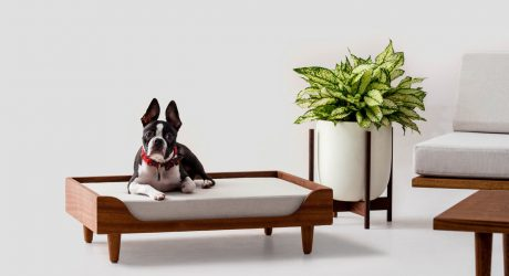 Modernica Announces the Case Study Furniture® Solid Wood Pet Daybed