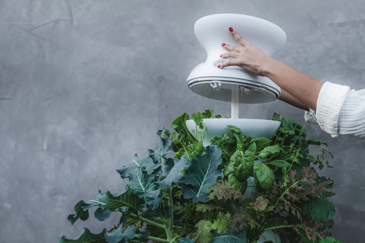 Lettuce Grow Has a Plug and Play Farmstand That Automates Gardening